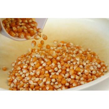 Majs (Popcorn)